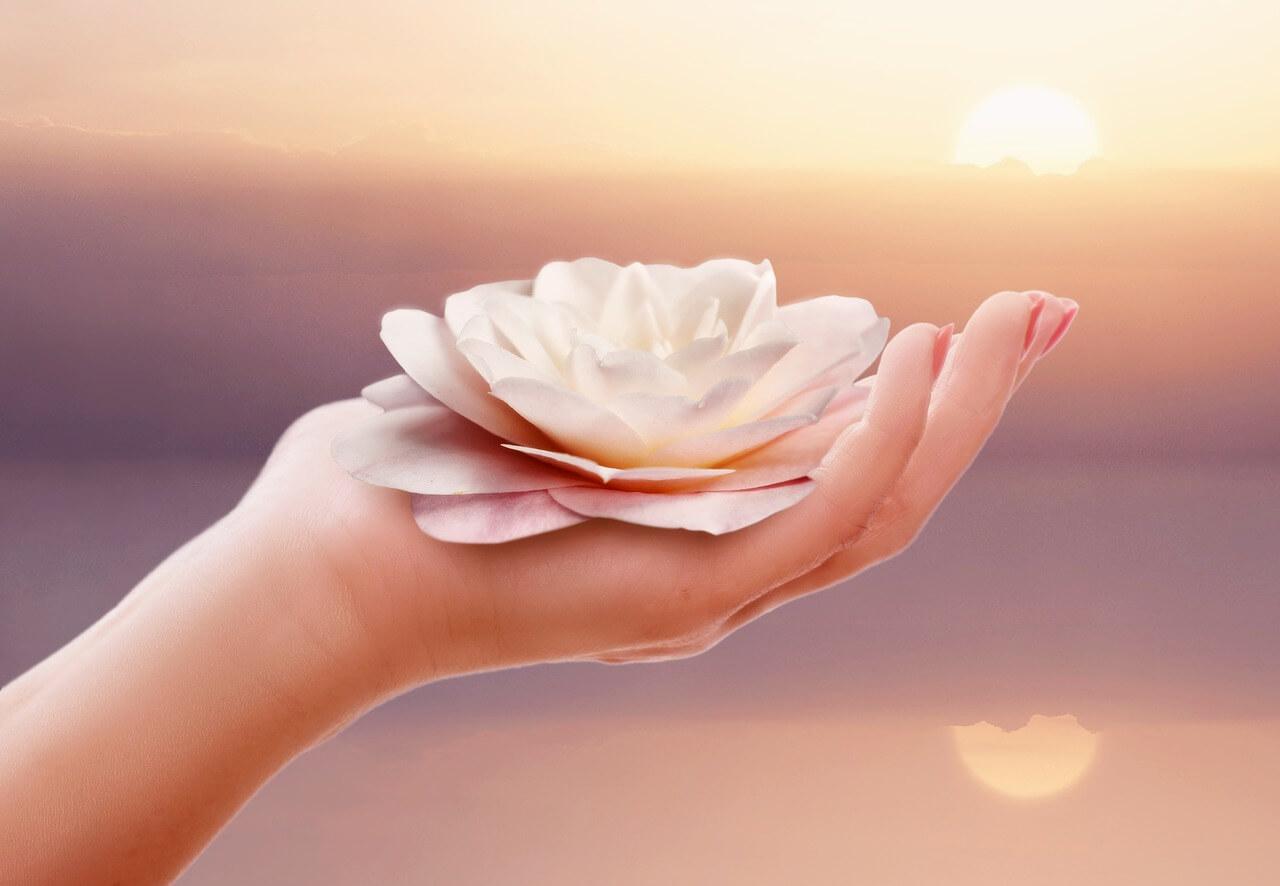 Hand mit Lotusblüte